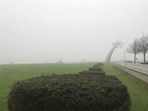 Bloem Schenkel in de Mist
